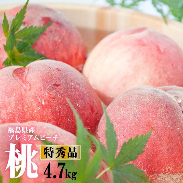 当店最上級桃 プレミアムピーチ 福島 特秀 桃 5kg箱(15~20玉) 福島県名産地から産地直送
